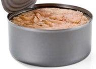 Ferret Food Recipes