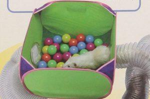 Ferret Dig Box Contents