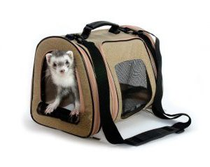 Unique Christmas Gifts For Pet Lovers Ferret Lovers
