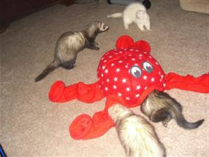 Marshall Ferret Octo-Play Sleep Sack Toy